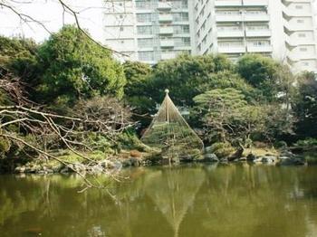 furukawa1.jpg
